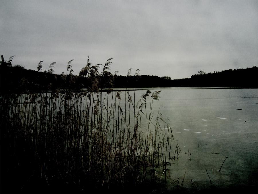 Down by the lake II