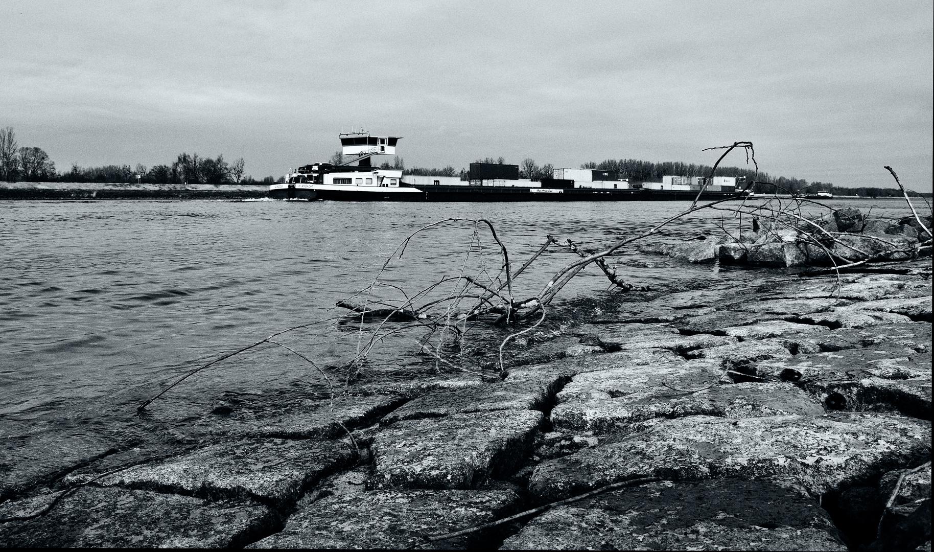 down the Rhine