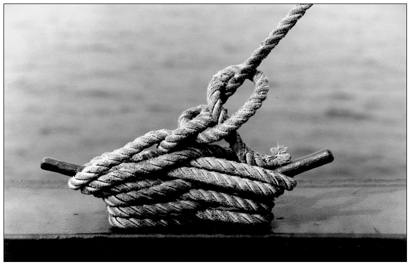 DQVH 40: Das Seil (1/4)