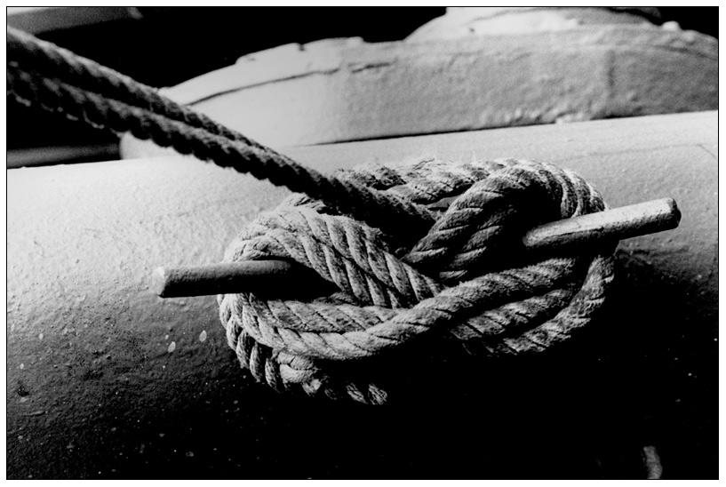 DQVH 41: Das Seil (2/4)