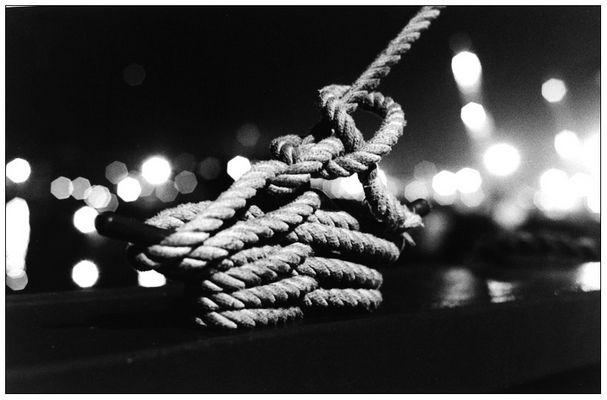 DQVH 42: Das Seil (3/4)