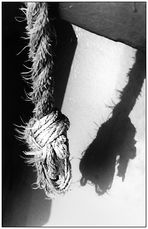 DQVH II 10: ... werfen ihre Schatten hernach