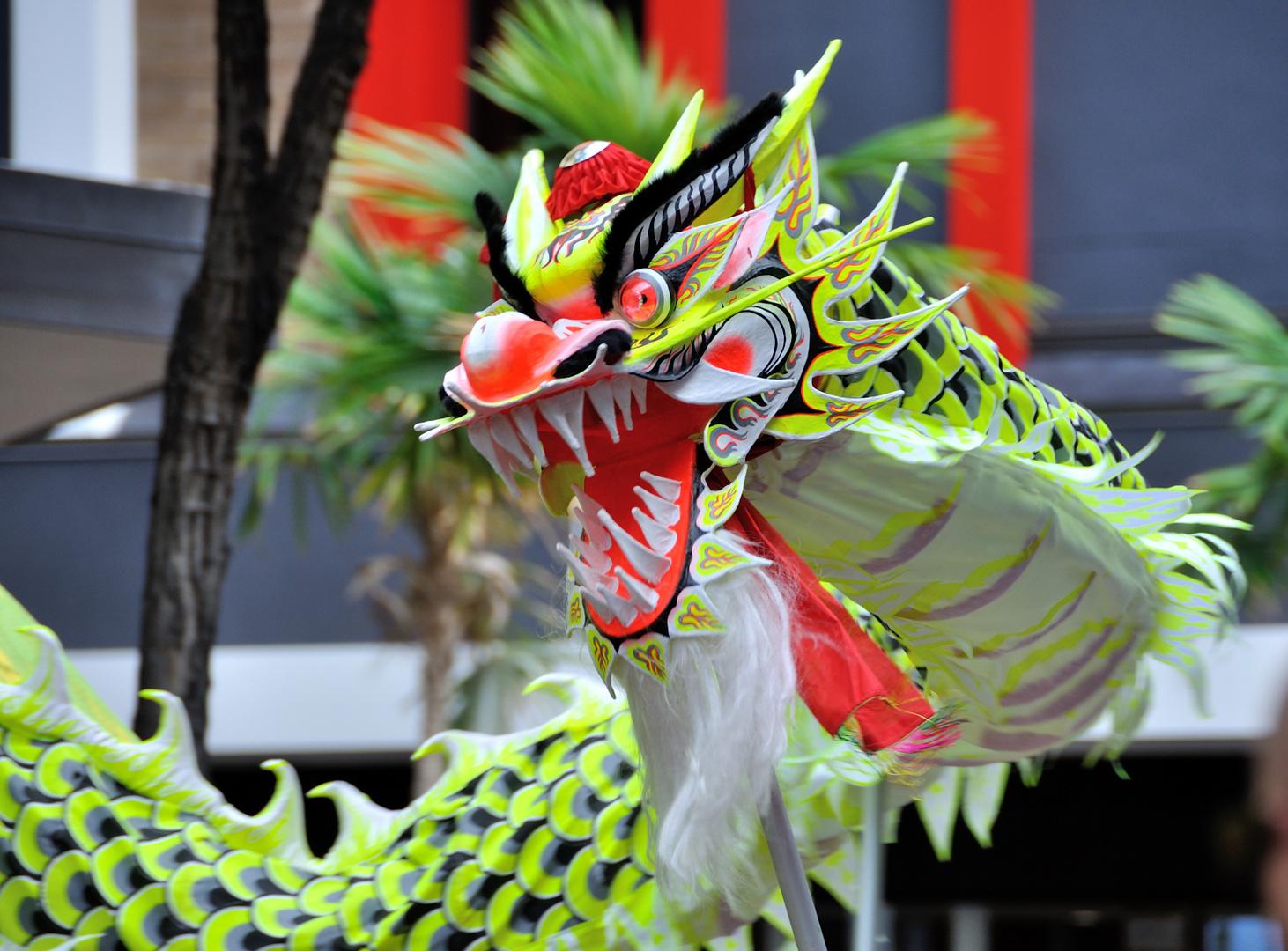 Drache beim chinesischen Neujahrjahrsfest