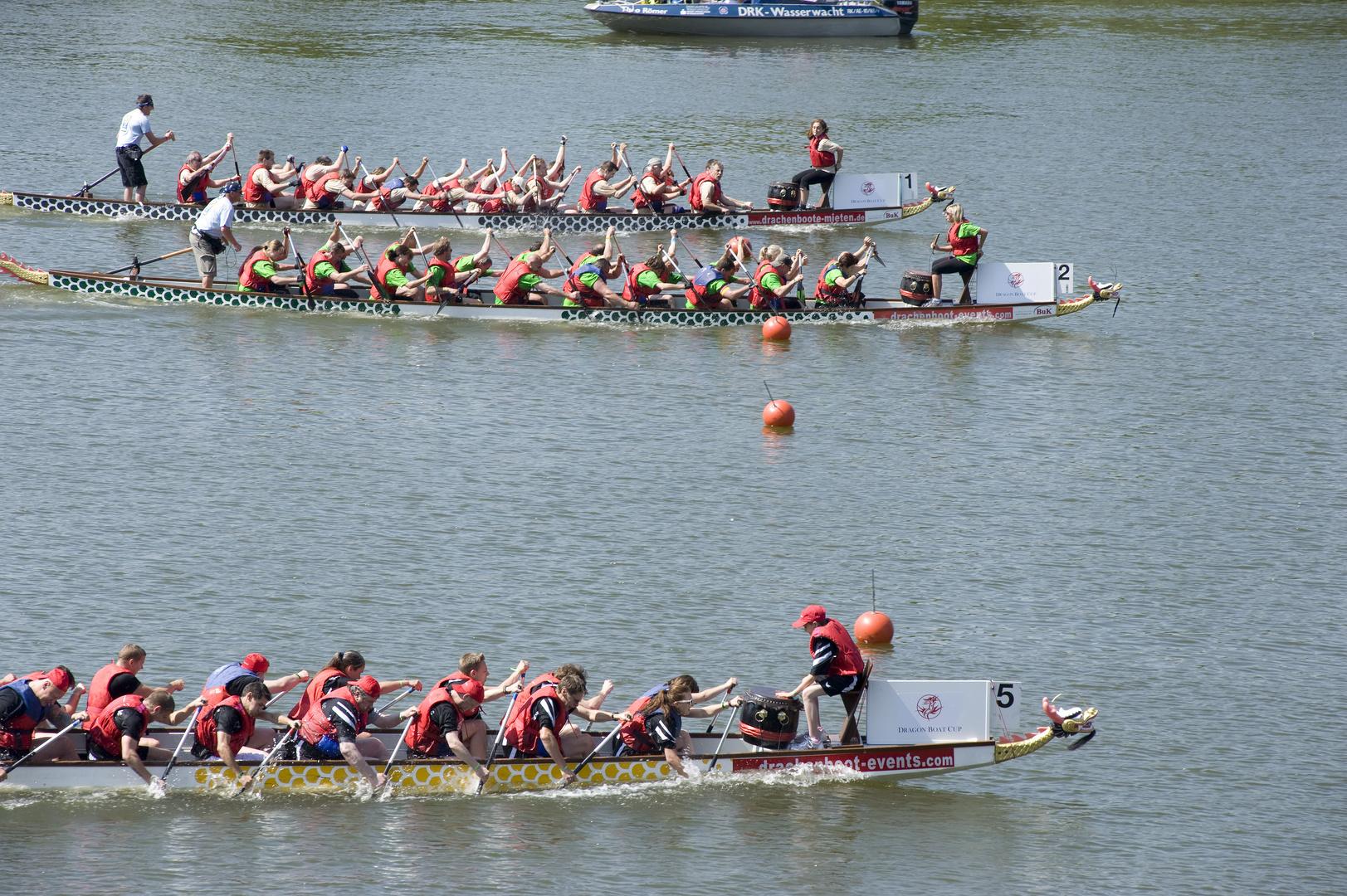 Drachenboot Rennen Düsseldorf