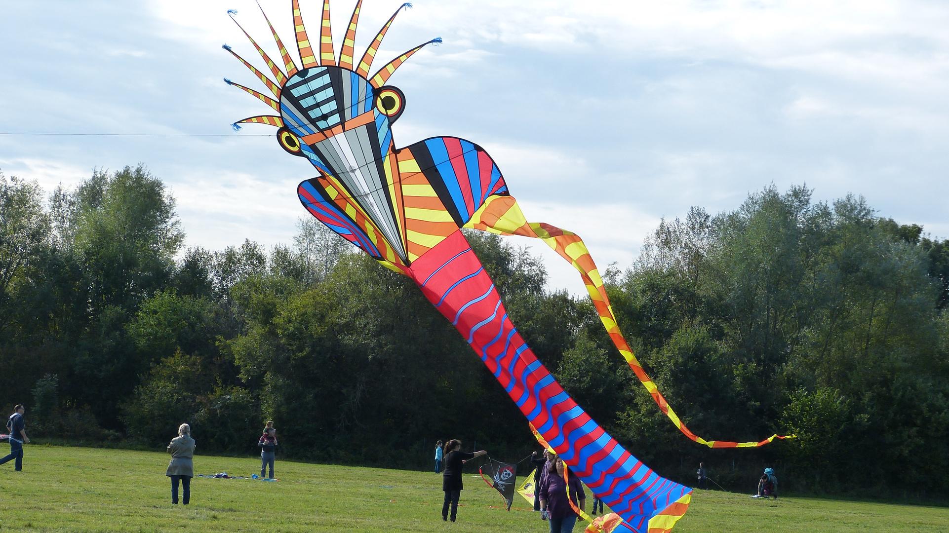 Drachenfest 4