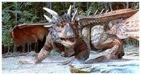 Draco the Dragon