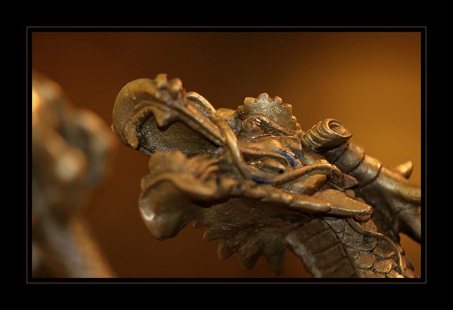 __dragon__