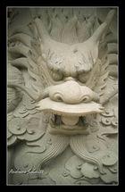 Dragon Style