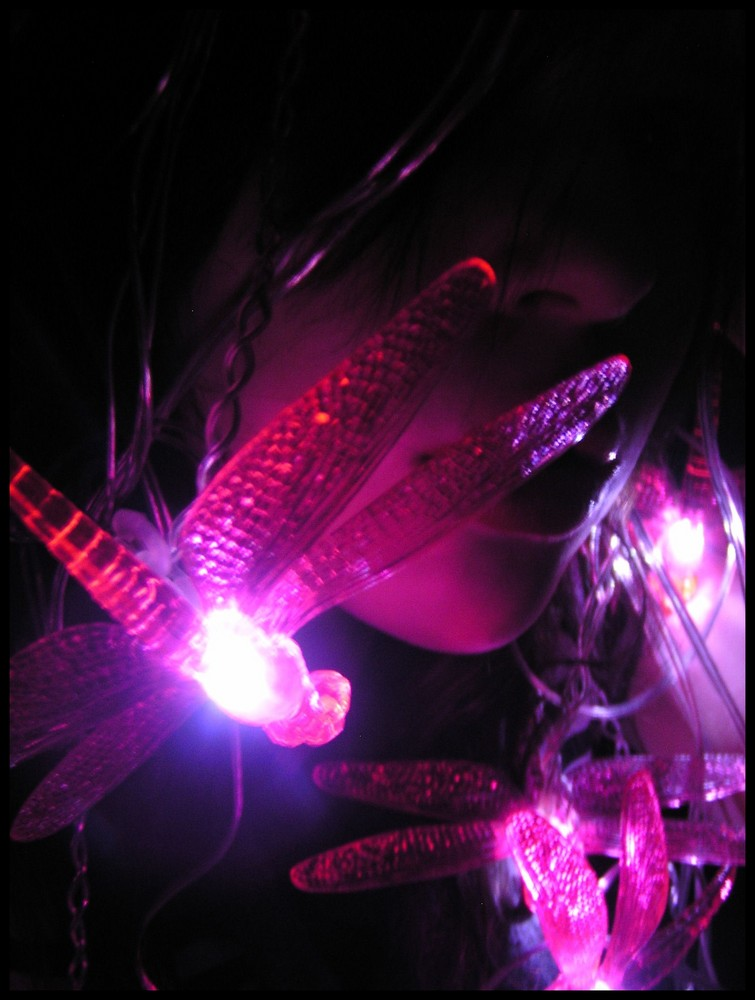 dragonfly.lights.