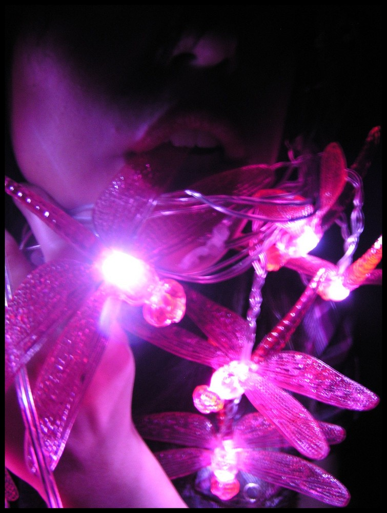dragonfly.lights. II