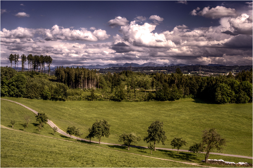 Dramatic Sky (Württ. Allgäu, Mai 2009)