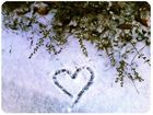 drawn in snow