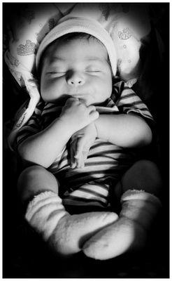 dream a little dream,...............
