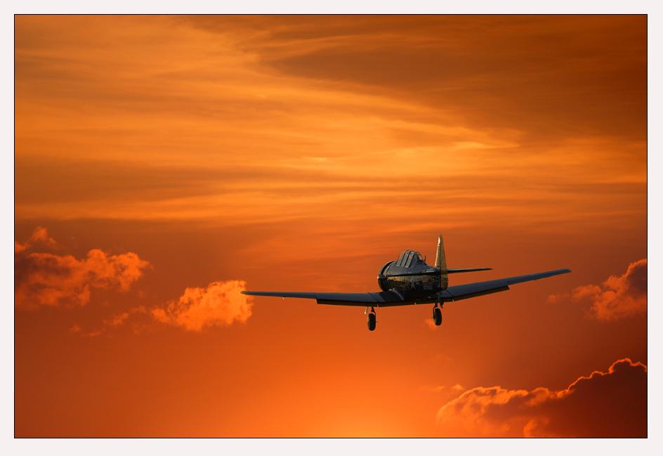Dream - Flight