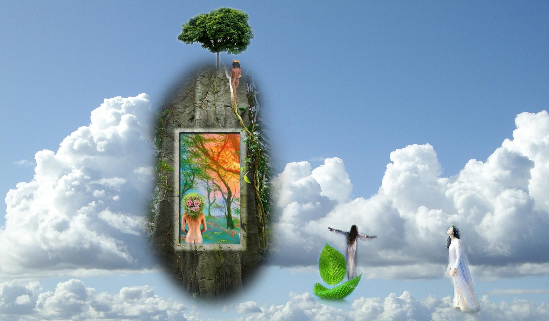"dream ""green"""