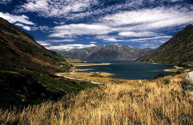 Dream Land in NZ