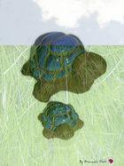 dream of turtles