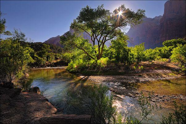 Dreamland - Zion Canyon