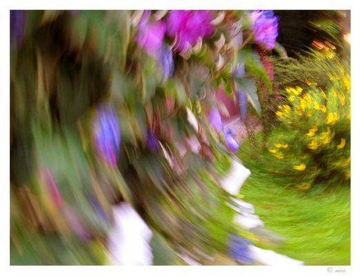 Drehender Garten #1