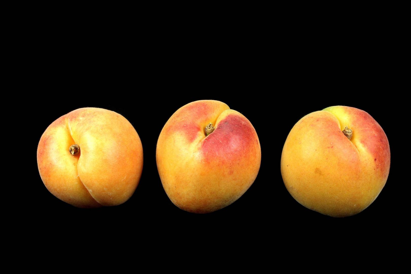 drei Aprikosen