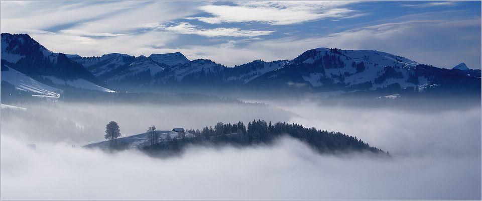 Drei Jahre Fotocommunity ... danke, dass Ihr mir den Weg aus dem Nebel ins Licht gezeigt habt!