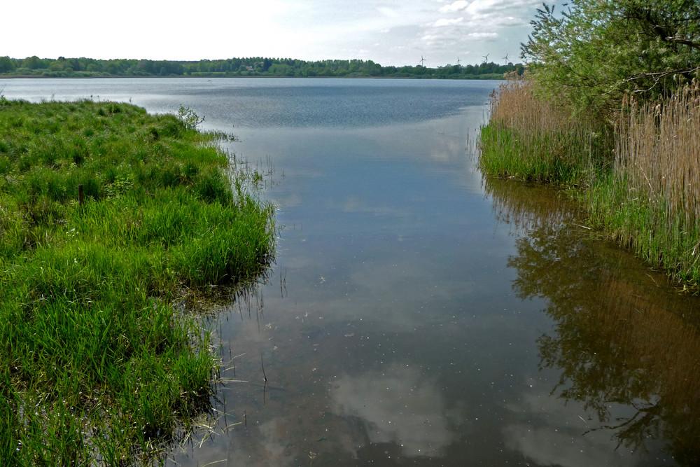 Dreifelder Weiher / Westerwald
