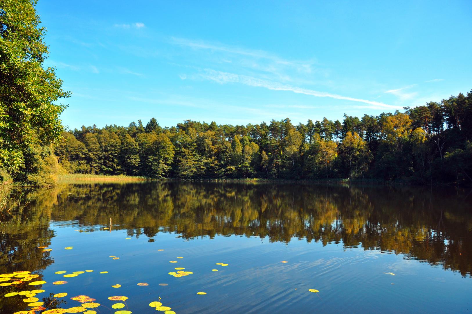 Dreisee in Brandenburg 4