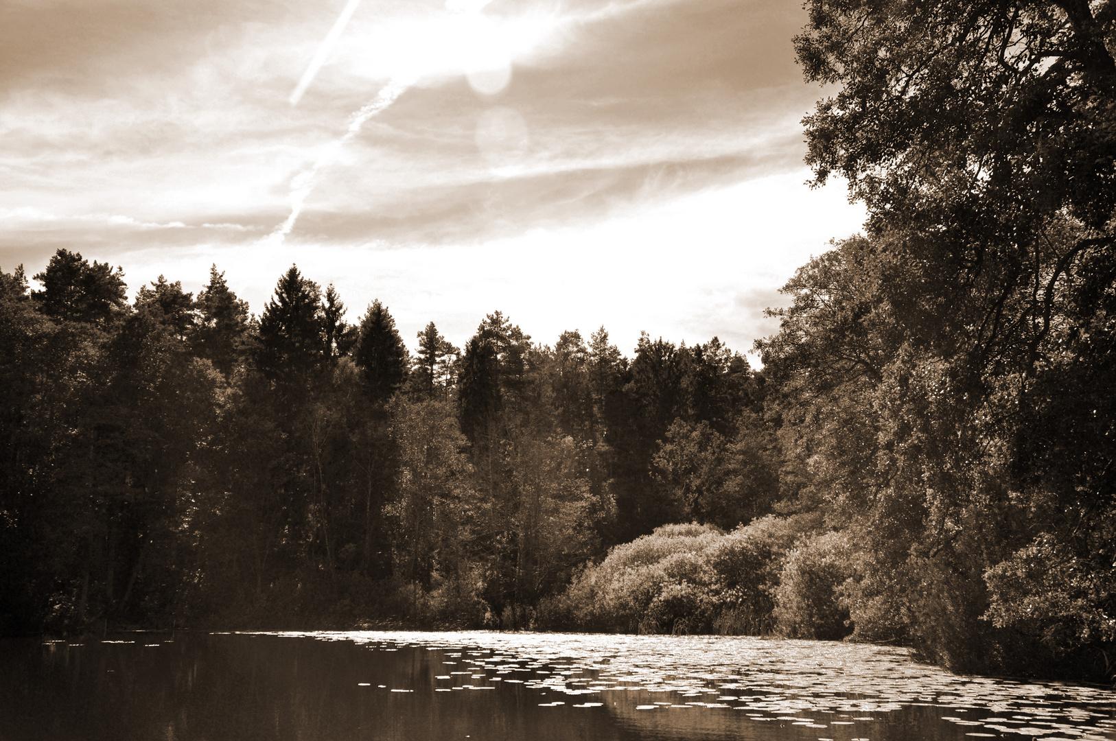 Dreisee in Brandenburg