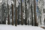 Dreisesselberg Eingefroren