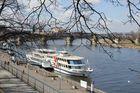 Dresden- Elbeufer