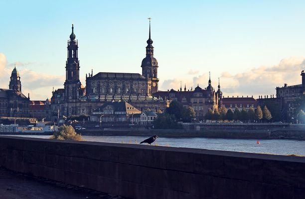 Dresden im Herbst V
