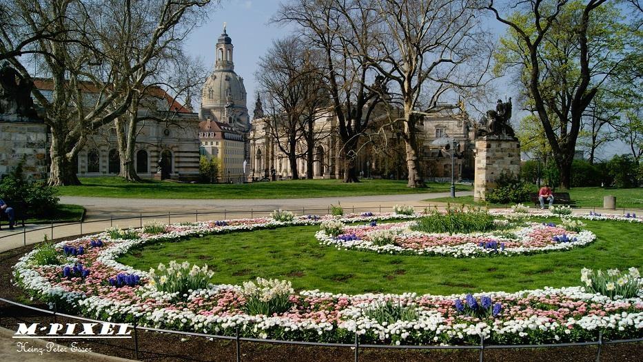 Dresden nach dem Frühjahrsputz