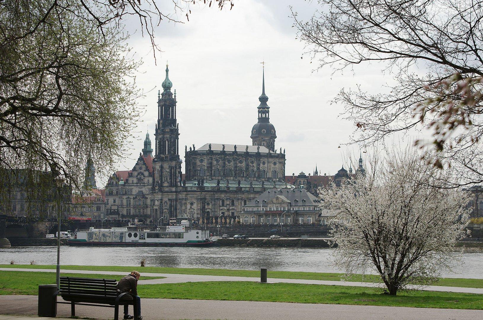 Dresdner Terrassenufer mit Hofkirche