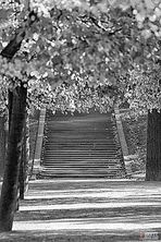 Dresdner Treppe