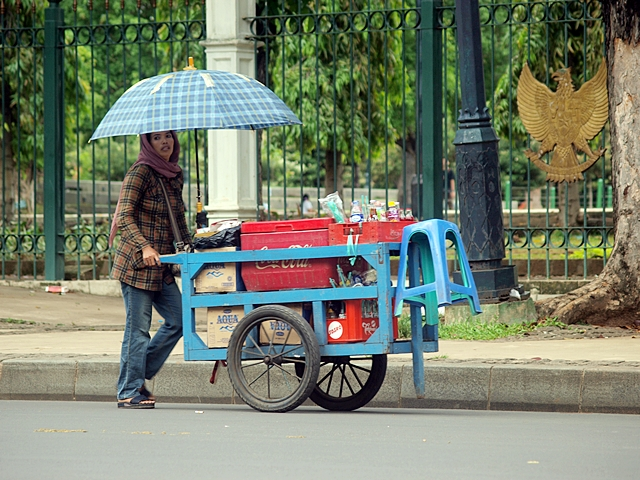 Drinks seller