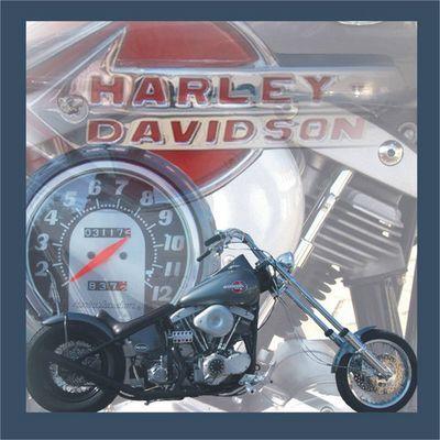 Drive a Harley