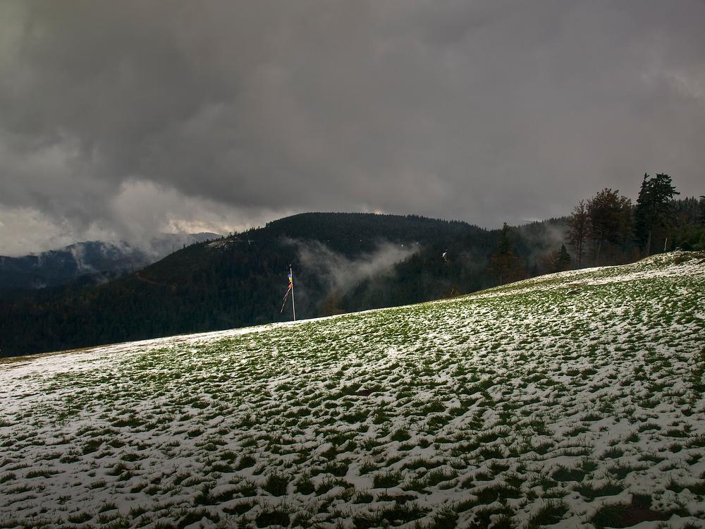 Droba em Wald, hoats a klois Schneele geschneit...