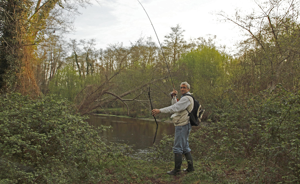 drôle de poisson !!!