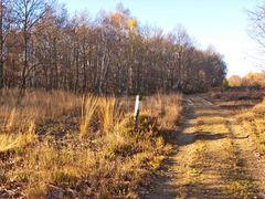 Drover Heide 3