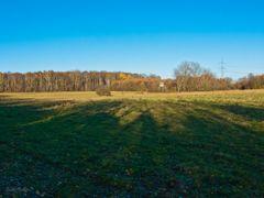 Drover Heide 4