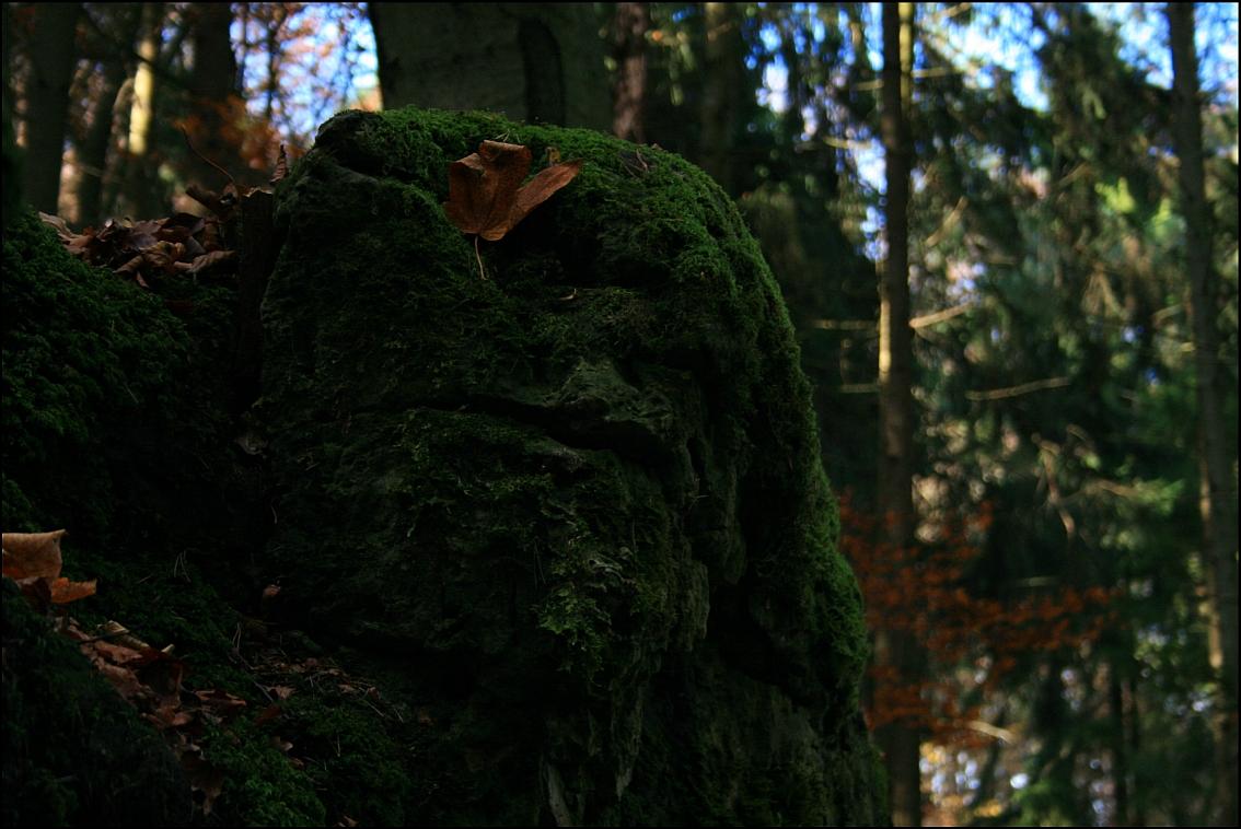 Druidenhain 2013/1