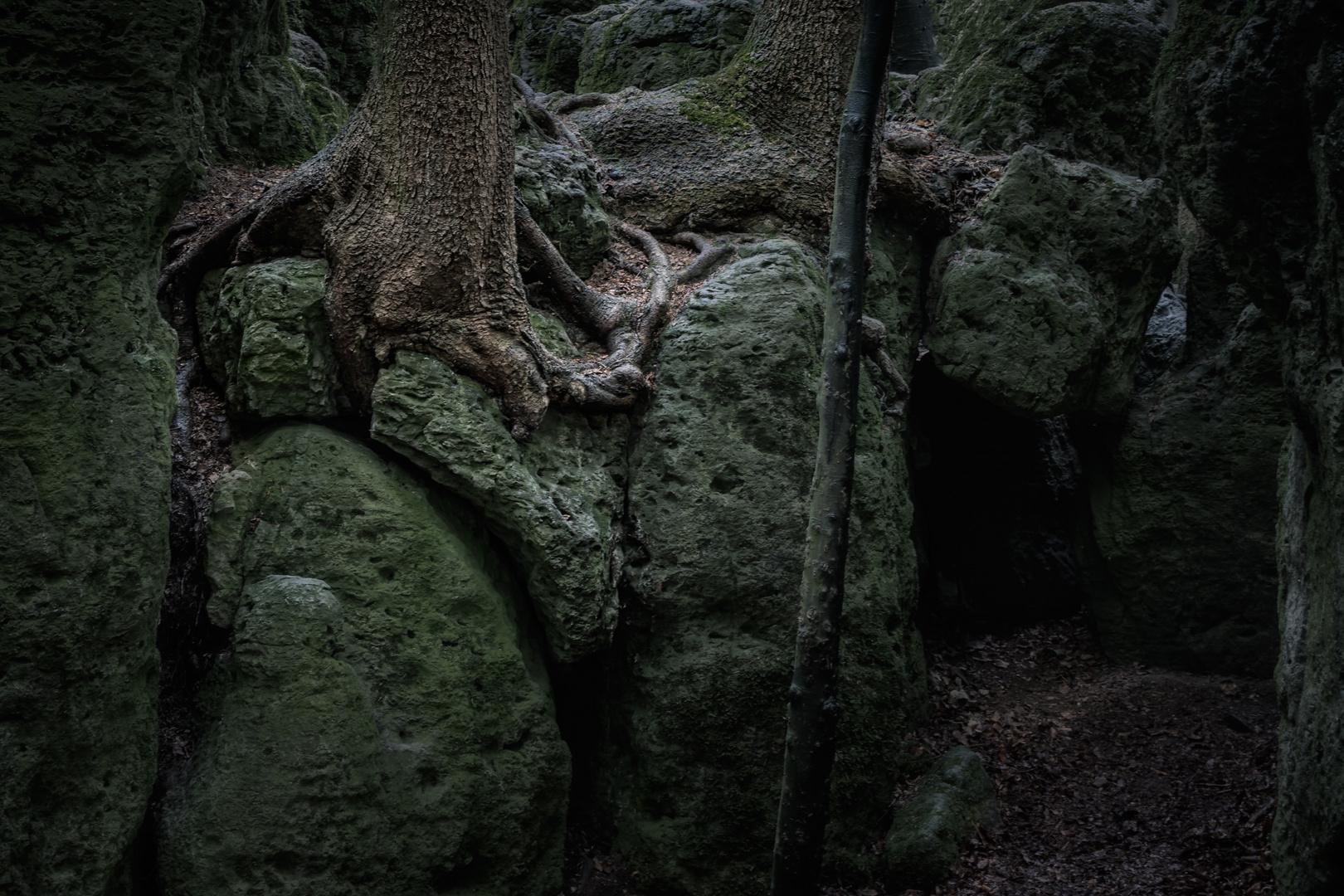 Druidenhain .....