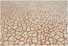 Dry....