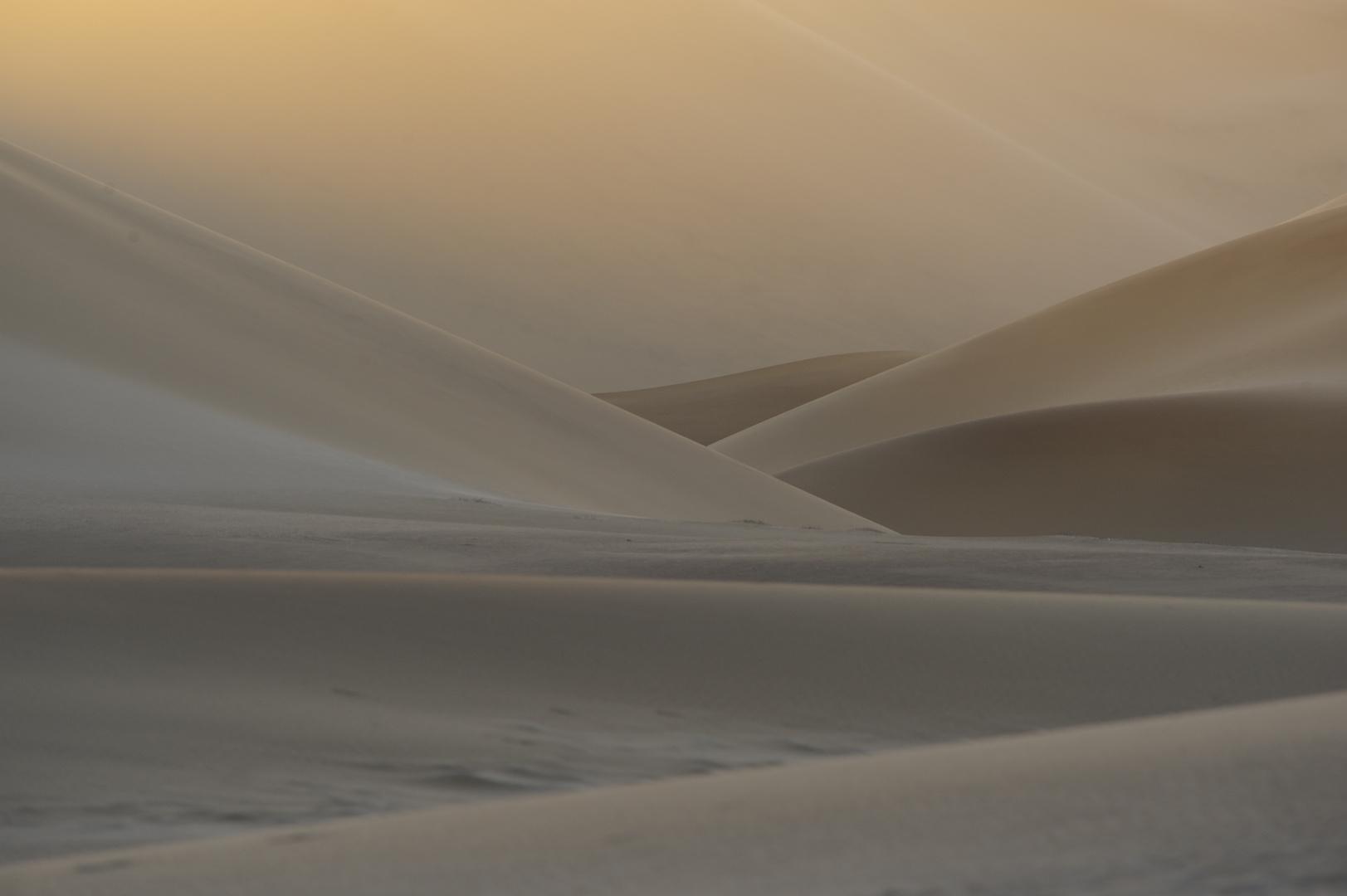 _DSC4453  -Sunset