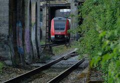 Dschungel-Pfade [Bahnraum Augsburg]