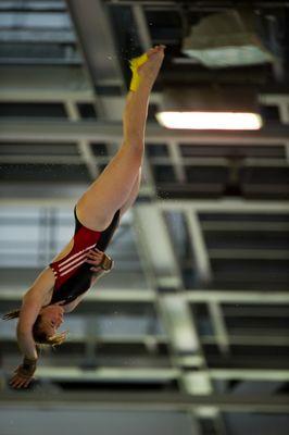 Dt. Meisterschaften im Wasserspringen in Berlin V