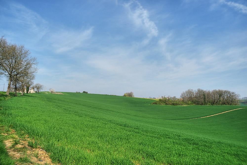 Du côté de Vianne Lot et Garonne (3)