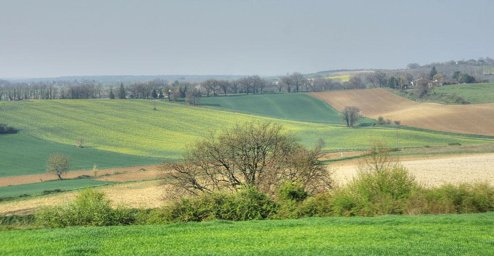 Du côté de Vianne (Lot et Garonne)