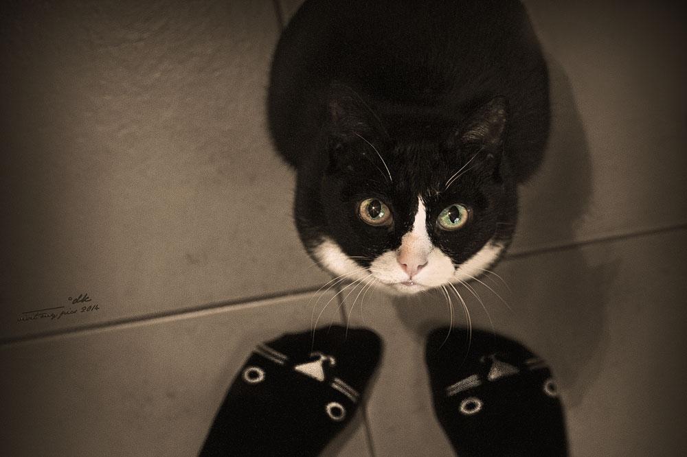 Du hast komische Füße