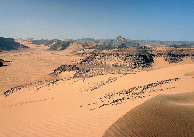 Du haut de la dune
